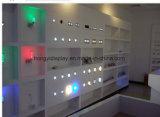 LED 가벼운 Slatwall 훈장, 벽면