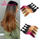 Cheveu malaisien en gros de Remy coloré par Ombre de cheveux humains de trame