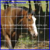Загородка фермы суставного сочленения пяди пастбища для животный ограждать