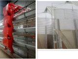 Nuovo disegno e grande capienza della gabbia automatica piena di strato