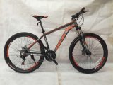 Novo modelo de bicicletas de montanha MTB-006