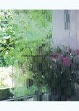 Vidro embutido alta qualidade, vidro decorativo, vidro da tela de seda para a porta