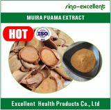 Polvo del extracto de la corteza de Muira Puama