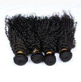 Inslag van het Menselijke Haar van het Haar van Remy Weft Braziliaanse Krullende