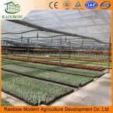 Ventilateur d'extraction, Hydroponic Grow Systems, Plastique Po Film Serre pour la culture des fraises