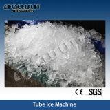 Macchina di ghiaccio del tubo di norma alimentare 10tpd 20tpd di Focusun