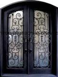 Portas da rua de vidro do ferro feito