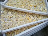 Économie d'énergie industrielle 75% de dessiccateur de pompe à chaleur de déshydrateur de fruits