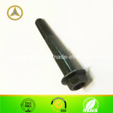 Shaft rosqueado Bolt para Gear Shifting M10X1.25X75