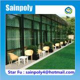 販売のための中国の一等級のガラス温室