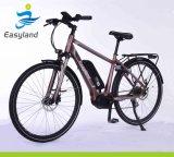 2017 تصميم جديدة دراجة كهربائيّة مع [ليثيوم بتّري] [700ك]