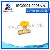 Clapet à gaz en laiton (YL507)