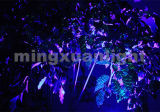 Laser do estágio do laser roxo mini para a venda