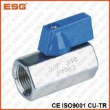 Valvola a sfera dell'acciaio inossidabile di Esg mini