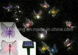 Lumière solaire de corde de fibre (LS-1031A)