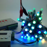 Indicatore luminoso di comitato della striscia del pixel di Digitahi RGB Ws2812b Digitahi LED