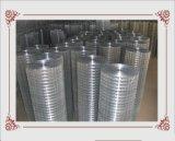 Rete metallica rivestita di /Galvanized del collegare di /PVC del collegare di /Steel del collegare di Annealded