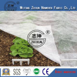 Cobertura de vegetais PP pano não tecido