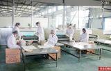Plateau remplaçable de service de traiteur de bagasse biodégradable non blanchie de canne à sucre