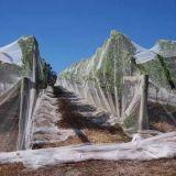 Jungfrau HDPE Landwirtschafts-Obstgarten-Plastikantihagel-Netz