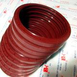 Selos do óleo de NBR/FKM Tc, dois bordos com mola, resistência de petróleo 135*165*8.5 /Customized