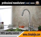 Taraud/robinet de bassin de cuisine d'acier inoxydable dans la salle de bains