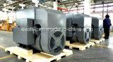 ディーゼル発電機のためのPmgシステムが付いている1000kVA交流発電機