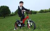 Bicicletta dei bambini della bici del ragazzo della sospensione