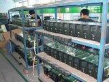 Sine puro Wave Inverter/de Grid Inverter 300-500w (TF300)