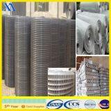 Treillis métallique soudé galvanisé par électro (Anping Xinao)