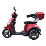 Elektrische Tricycle met Dynamic Controller (gk-P101Z)