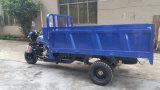 가솔린 중국어 3개의 바퀴 기관자전차 가격