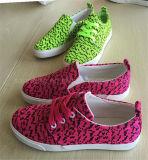 Zapatos de lona brillantes del color del verano