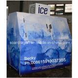 DC-600 Eisspeicher-Kasten für Verkauf Selbst-Entfrosten einfrierenden