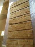 Arenaria gialla della Cina, mattonelle del fungo della pietra della coltura dell'arenaria
