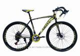 대중적인 탄소 700c 산 도로 조정 자전거 (ly 38)