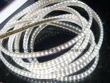 Luz brillante de la cuerda SMD2835 alta 110V/220V (SMD2835-120)