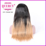 A peruca malaia da parte dianteira do laço para mulheres com linha fina natural, reta, todas as cores está disponível