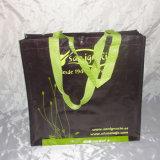 Sacs d'épicerie réutilisables amicaux d'achats d'Eco (LJ-NWB10)