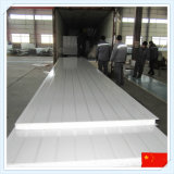 El panel incombustible Heat-Insulated de calidad superior de China EPS Sanwich