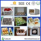 Polystyren Beads Wholesale für Styrofoam Plates und Airplane