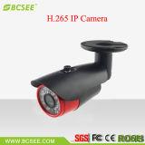 H. 265 de Professionele Camera van het Alarm van het Toezicht van IRL van de Camera van HD IP Waterdichte (BIPH20E-CA30)