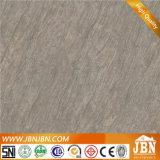 Nuevo de inyección de tinta de porcelana rústica piso de acabado mate (JN6210G)
