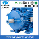 CE Approved 0.12 ~ 315kwye2 Series Three Phase Asynchronous Electric Motors