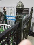 景色のArchitechureの金属アルミニウム、ステンレス鋼、亜鉛鋼鉄ドアの塀