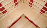 Stanza di sauna di Infrared lontano (SEK-AP3C)