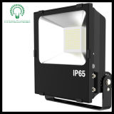 IP65 100W Beautiful High Lumen Sliver 또는 Black LED Flood Light