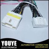 De automobiel Uitrusting van de Kabels van de Vlecht van de Uitrusting van de Bedrading Auto