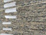 Bancada clara da parte superior da vaidade do granito de Santa Cecelia