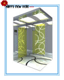 1250kg confortable Home Passenger Elevator avec la pièce de Machine
